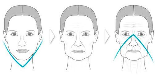 Гравитационное старение кожи